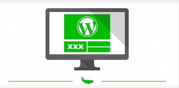 crakrevenue-wordpress-themes-adulte-network