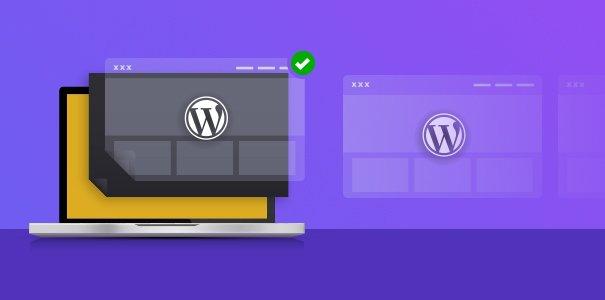 wordpress theme adult website